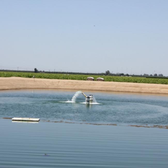 HydroFLOW Reduces Algae Growth